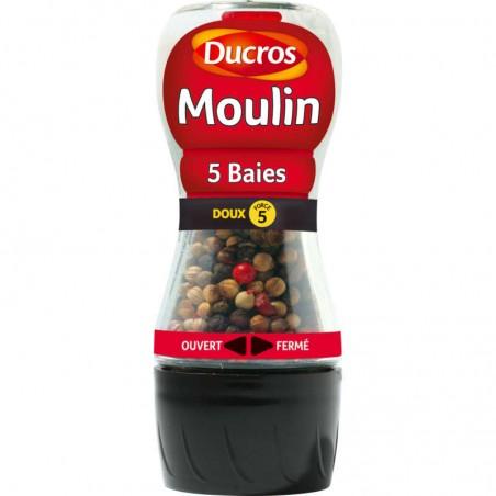 Moulin - Mélange 5 Baies - doux 24g DUCROS